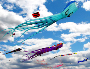 kite-festival-colorado-free-events-festivals