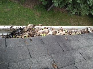 home-maintenance-gutter-cleaning